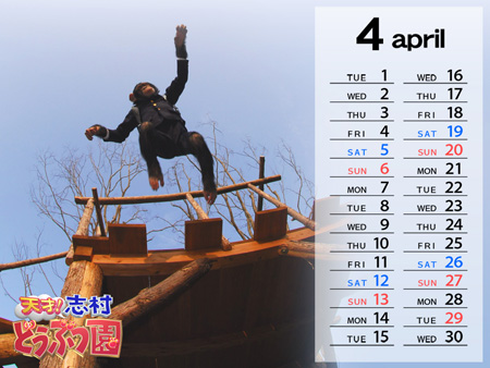 pan-kun-calendar-april.jpg